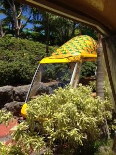 Pineapple_style